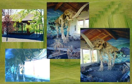 Grangeville's Columbian Mammoth Exhibit