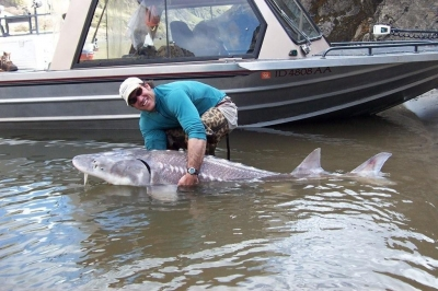 Sturgeon Fishing at Salmon River and Snake River